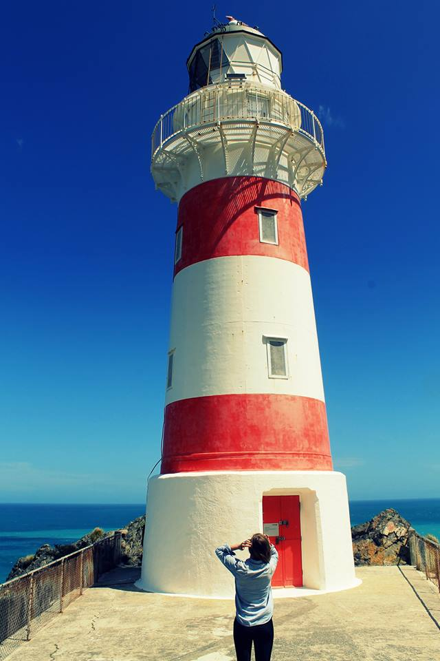 Cape Palliser, New Zealand.