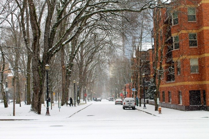 Snow Day in Portland, Oregon