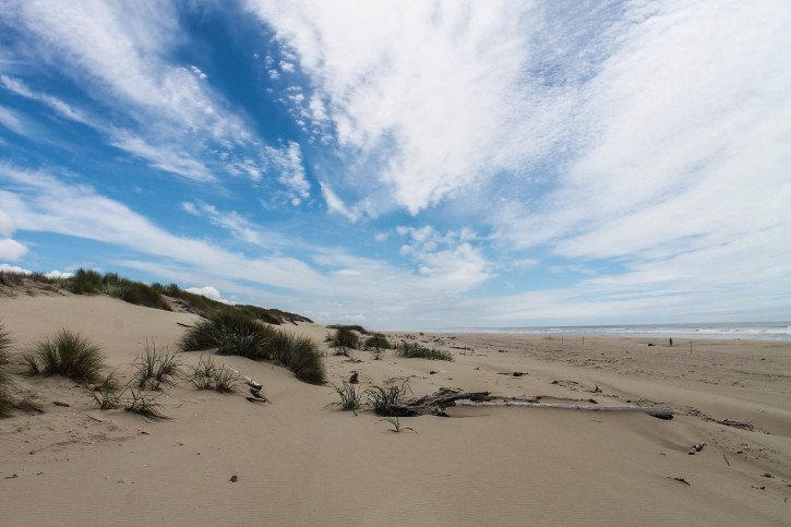 Sand Dunes in Florence, Oregon - USA