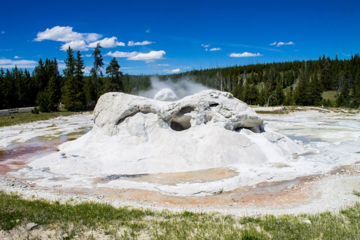 The Grotto Geyser at the Upper Geyser Basin - Yellowstone National Park - USA Travel