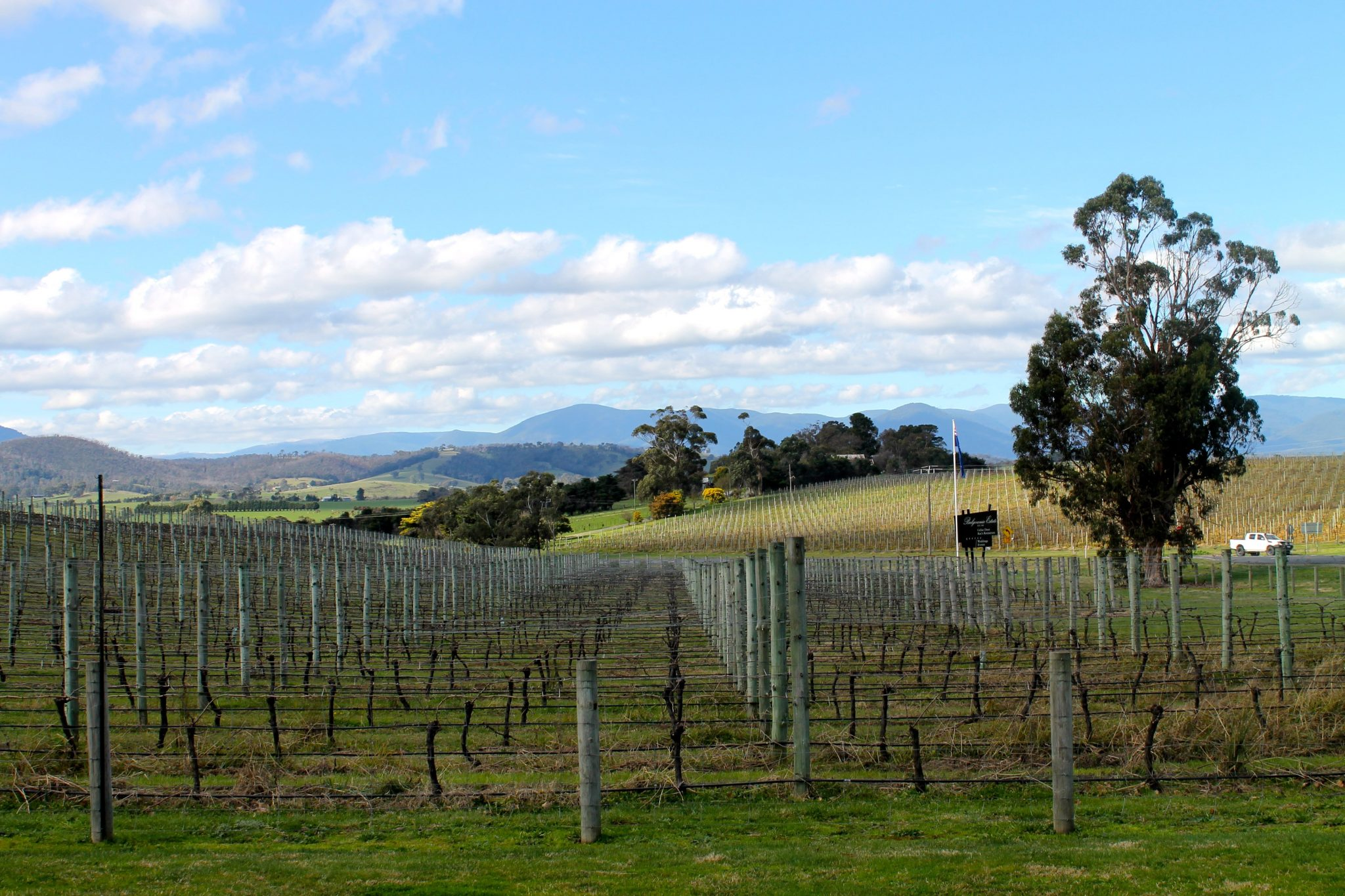 the beautiful yarra valley