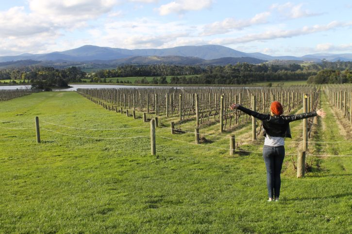 Wine tasting in the Yarra Valley, Australia