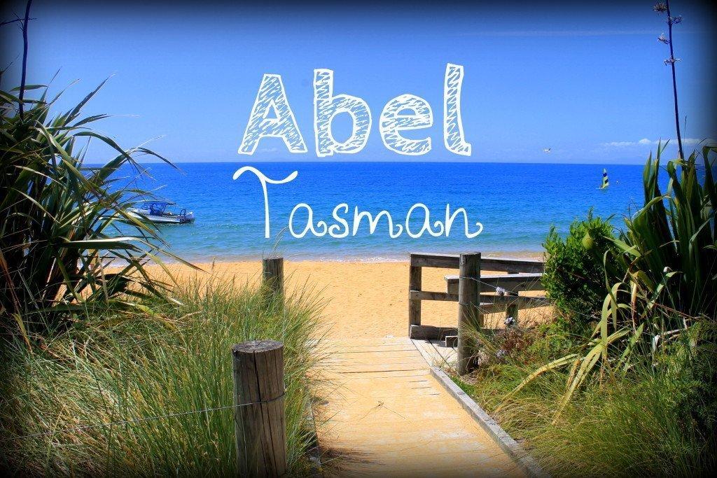 abel tasman track