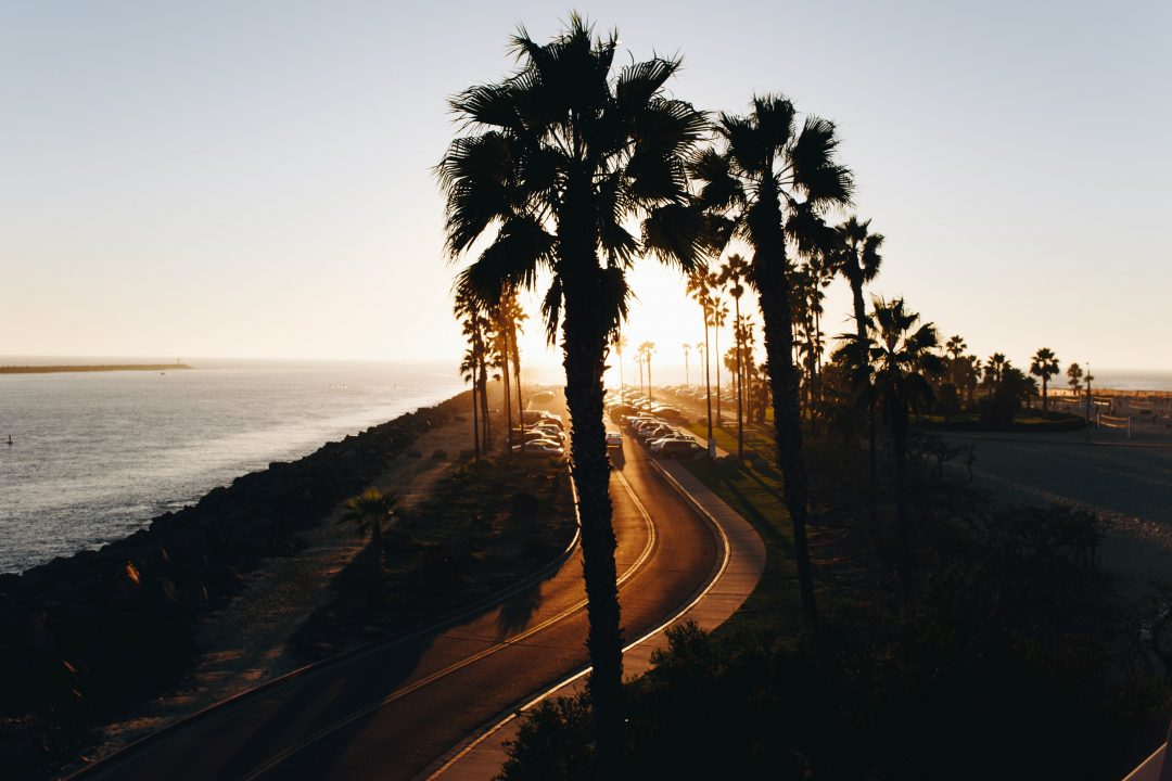 101 things to do in San Diego (from a Local) | The Ultimate Bucket List