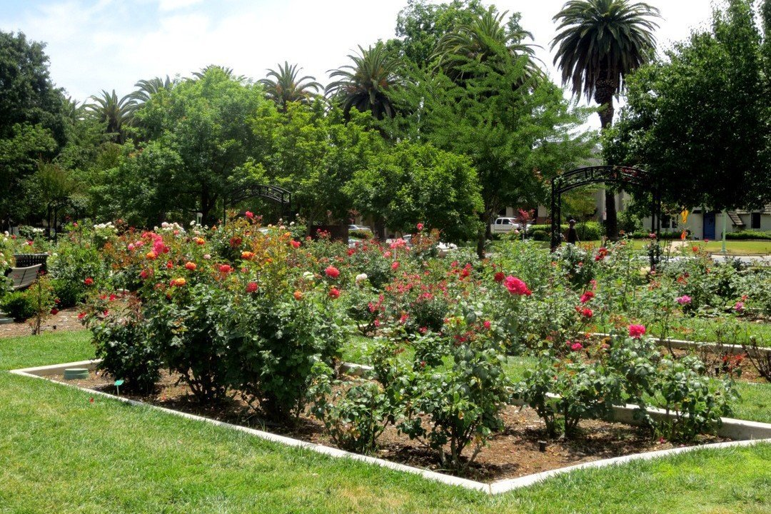McKinley Garden - free things to do in Sacramento