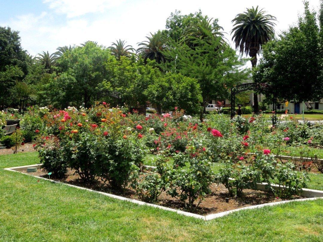 McKinley Garden - Sacramento, California