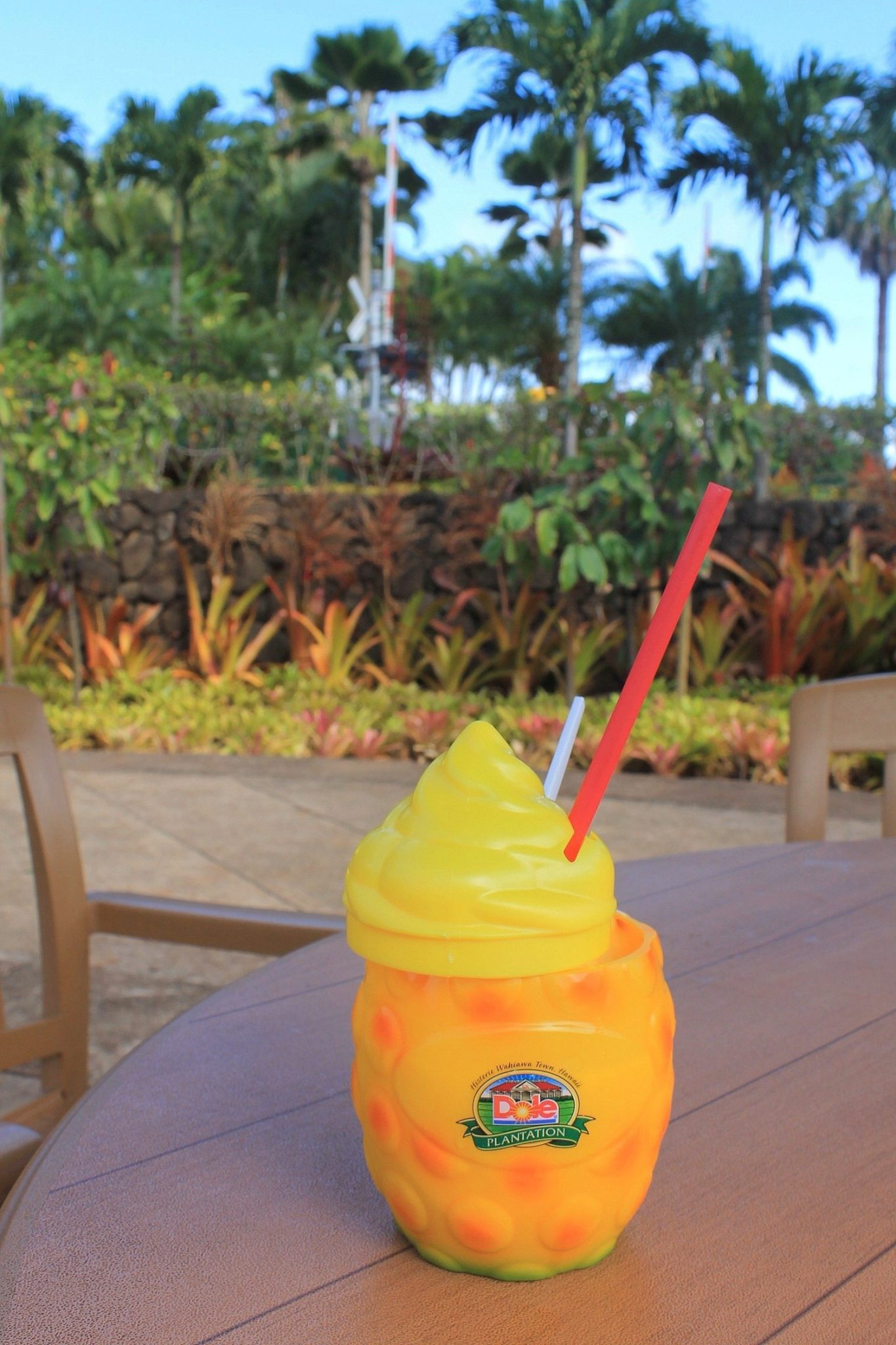 Dole Plantation - Oahu, Hawaii