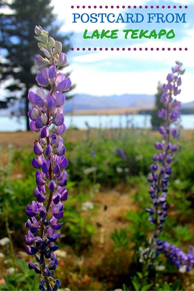 Postcard from Lake Tekapo