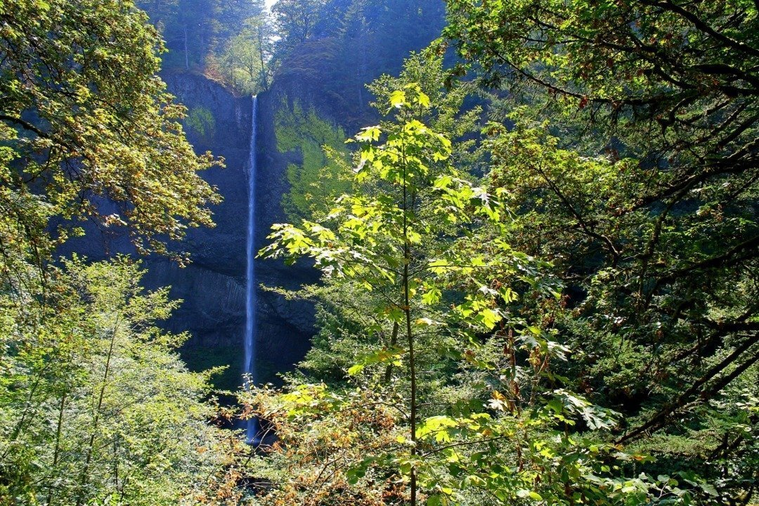 Columbia River Gorge   waterfalls near Portland, Oregon