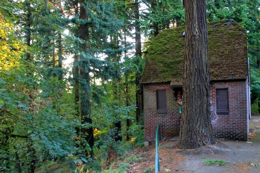 Mt. Tabor Park   unique things to do in Portland Oregon