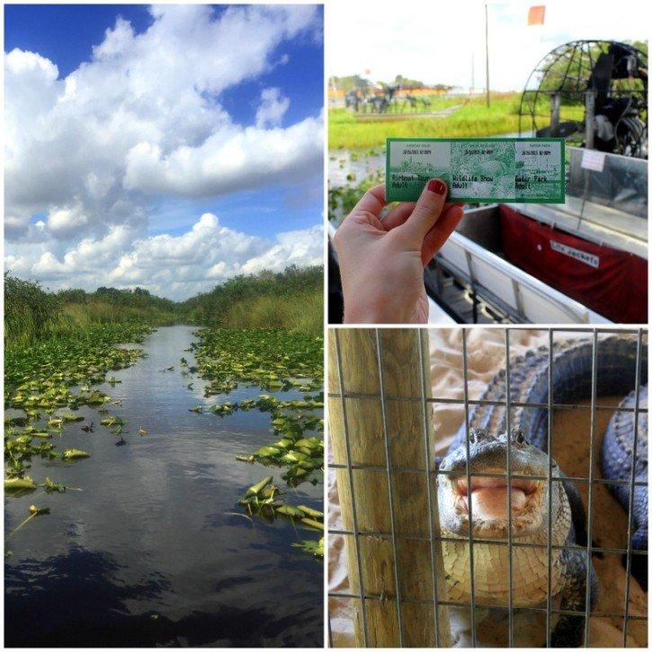 Gator Park - Everglades, Florida