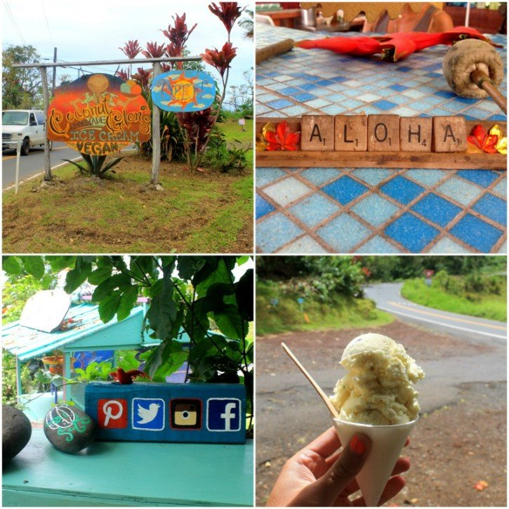 Coconut Glen's Ice Cream - Hana Highway