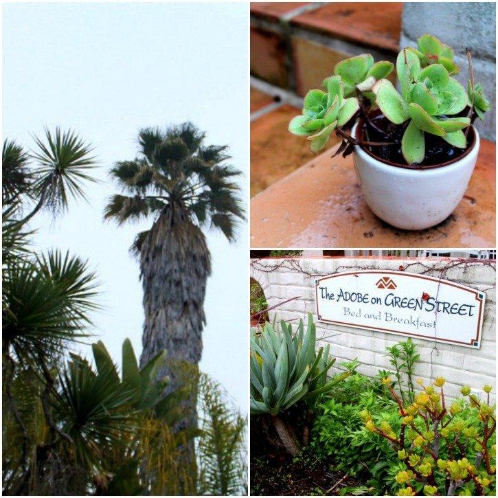 The Adobe on Green Street - The coziest accommodation in Santa Cruz, California