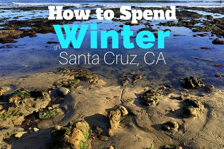 What to Do in Santa Cruz in Winter
