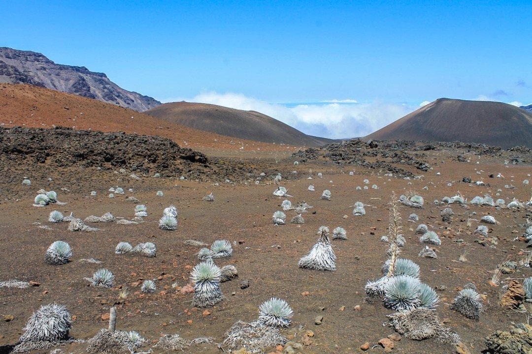 Where to hike in Maui - Haleakala National Park