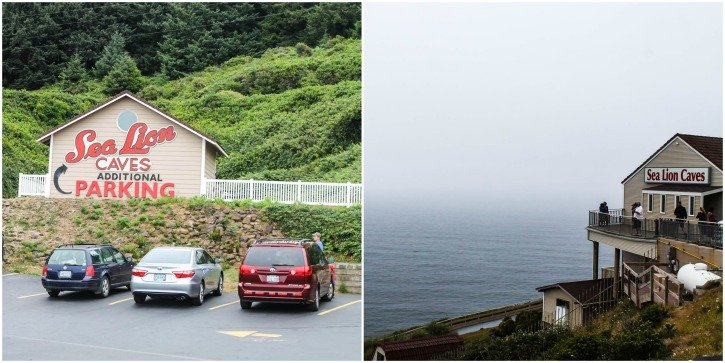 What do to in Florence, Oregon - visit the Sea Lion Cave