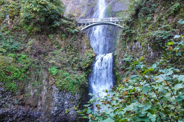 Multnomah Falls - The Fruit Loop Tour