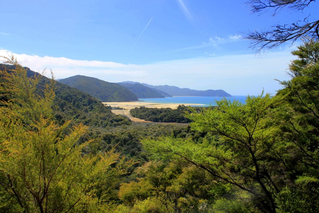 Abel Tasman Coast Track - Must See Places in New Zealand