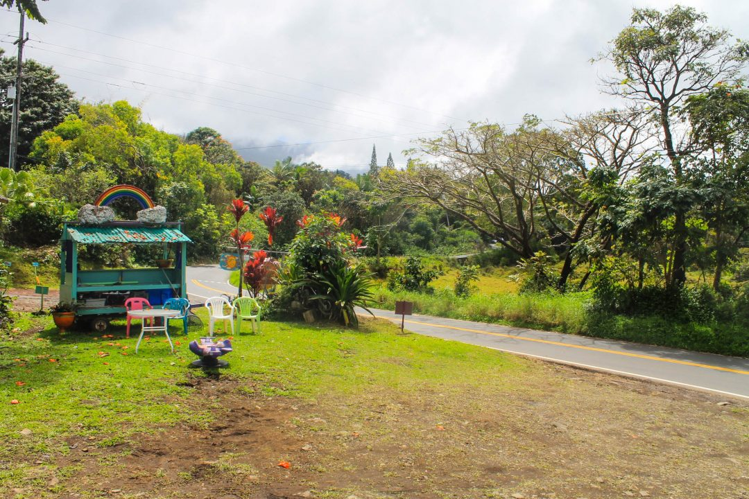 Vegan ice cream stand on the Road to Hana in Maui, Hawaii