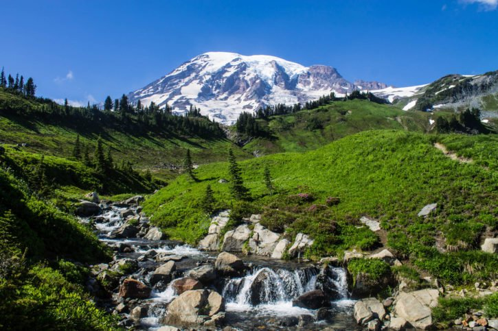 Mt. Rainier National Park - InstaFAM Tour through Washington State
