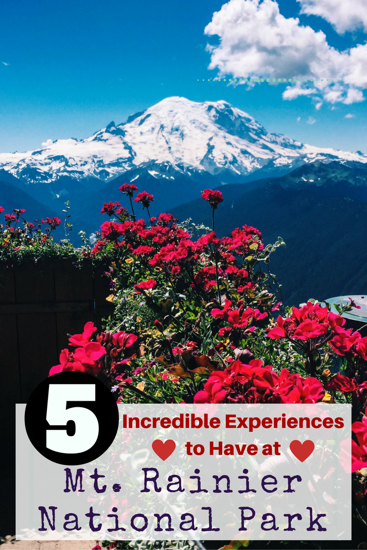 5 Incredible Experiences to Have in Mt. Rainier National Park