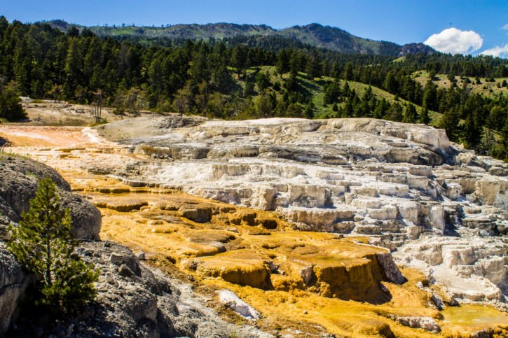 Mammoth Hot Springs - Yellowstone National Park - USA Travel
