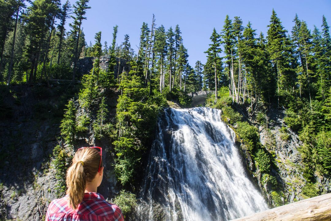 5 Incredible Things to do at Mt Rainier National Park