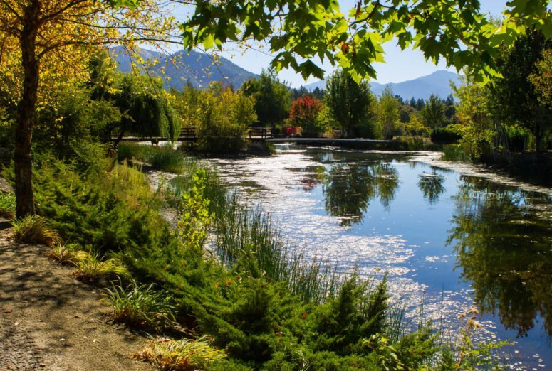 6 Unique Things to Do in Grants Pass, Oregon