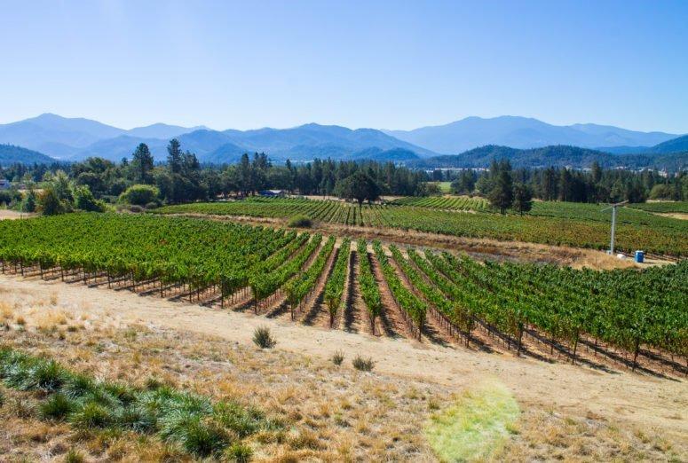Grants Pass Southern Oregon - Serra Vineyard
