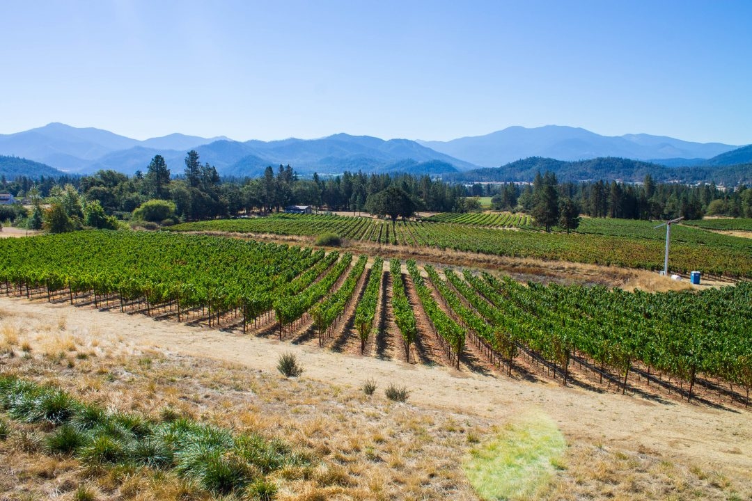 Grants Pass Southern Oregon wineries - Serra Vineyard