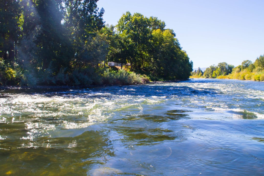 Things to do in Southern Oregon - Paddled Pub Tour in Grants Pass