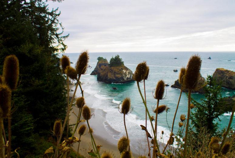 Samuel H. Boardman State Scenic Corridor, Oregon - USA Travel