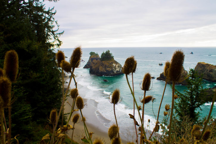 Samuel H. Boardman State Scenic Corridor - South Oregon Coast - USA Travel