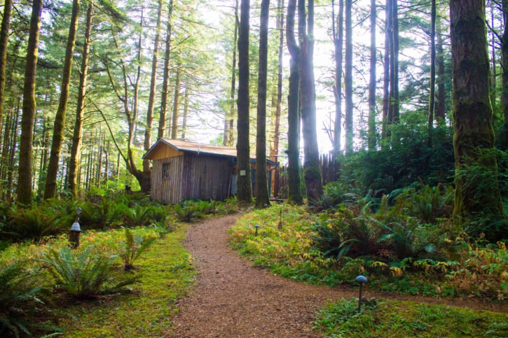 WildSprings Guest Habitat - Port Orford, Oregon - USA Travel