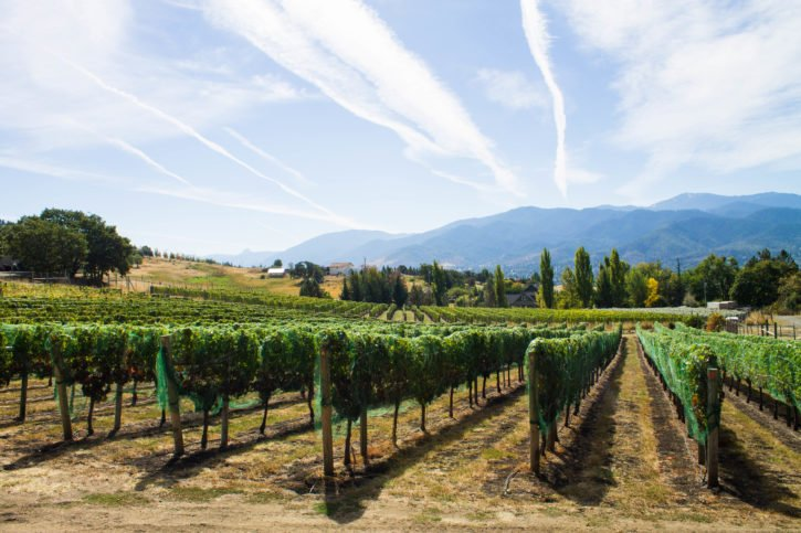 Grizzly Peak Winery in Ashland, Oregon - USA Travel