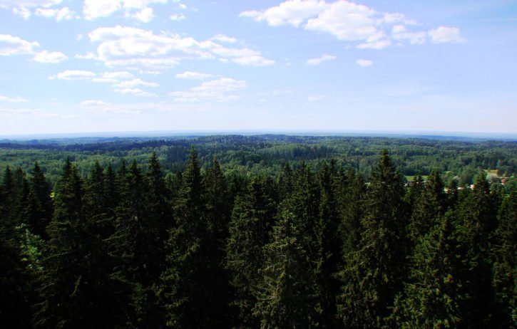 Haanja Nature Park - Estonia Travel | Europe