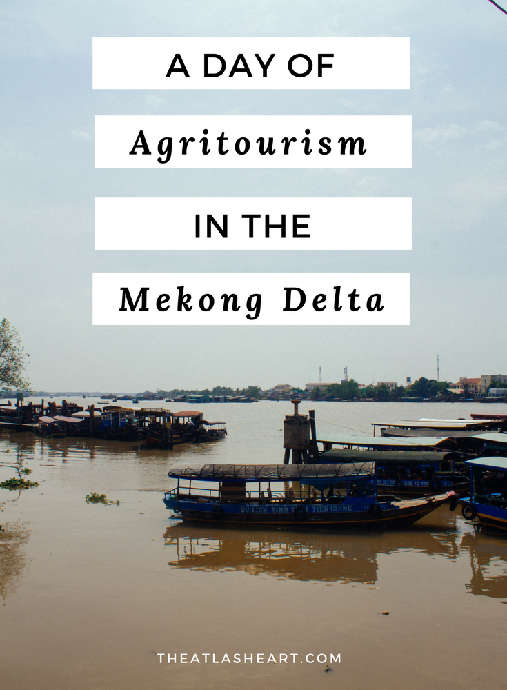 A Day of Agritourism in the Mekong Delta - Vietnam Travel