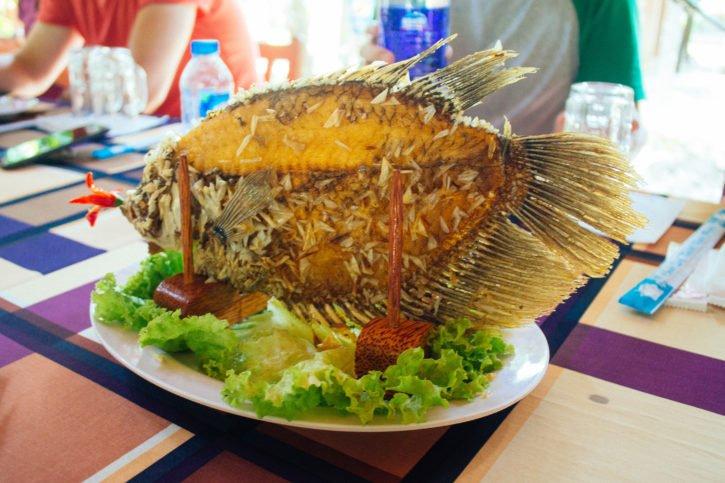 Mekong Delta tour with Intrepid Urban Adventures - Vietnam Travel