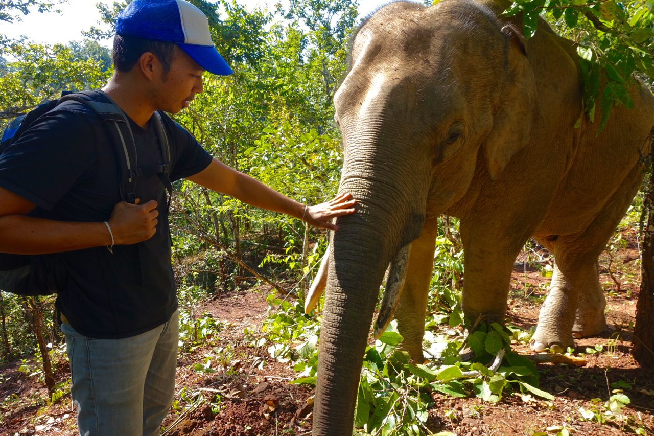 Short Term Volunteer Opportunities Abroad | Chiang Mai, Thailand
