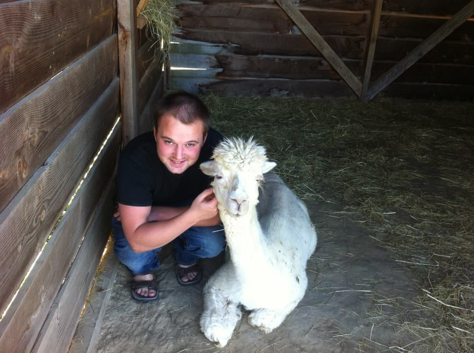 Animal Volunteering Experiences Abroad - James house sitting Alpacas in France