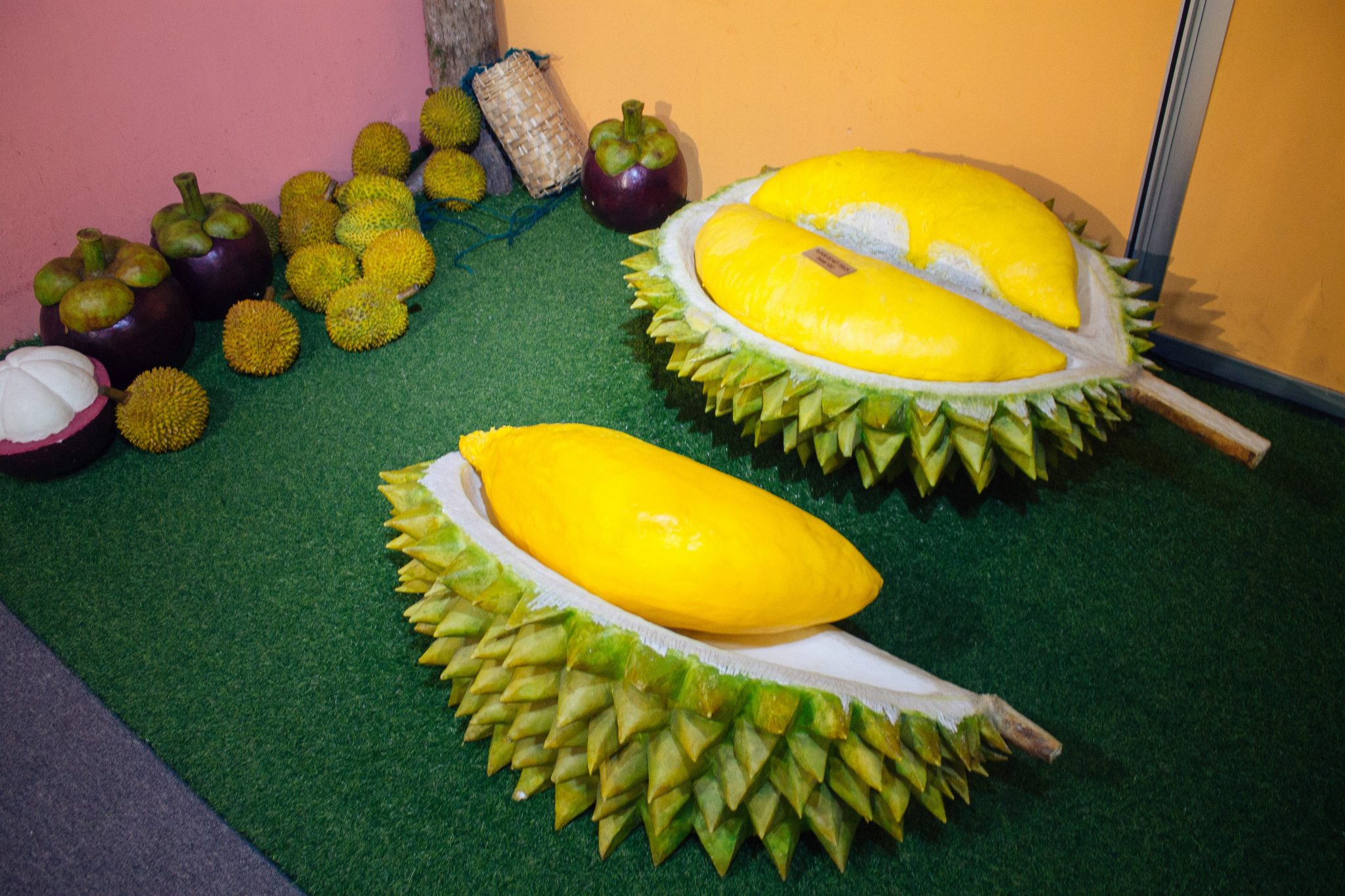 Durian at the Wonderfood Museum in George Town, Penang, Malaysia | Asia Travel