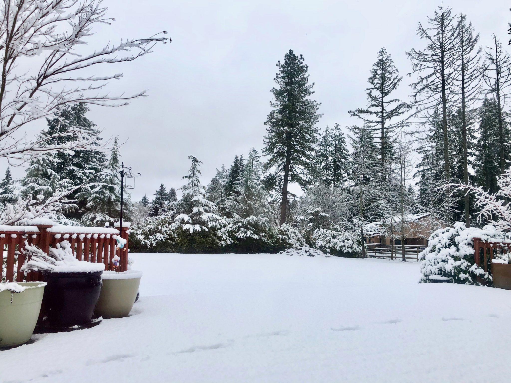Wrap Up: February 2018 - Eugene, Oregon