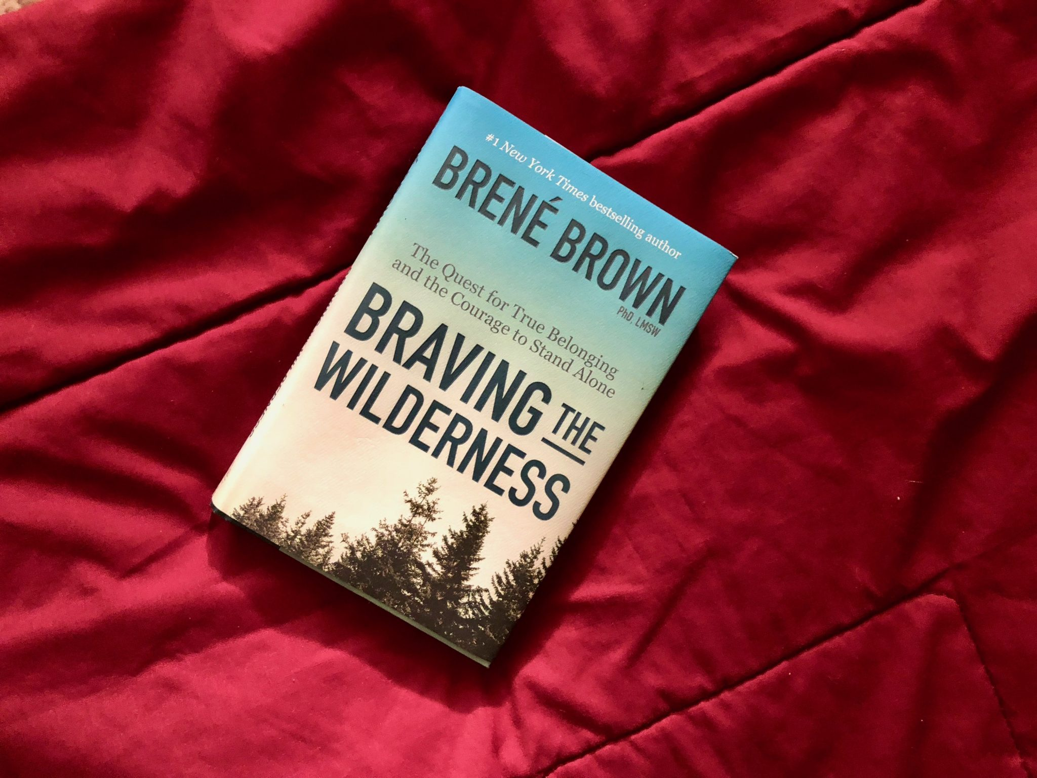 Wrap Up: February 2018 - Braving the Wilderness by Brene Brown