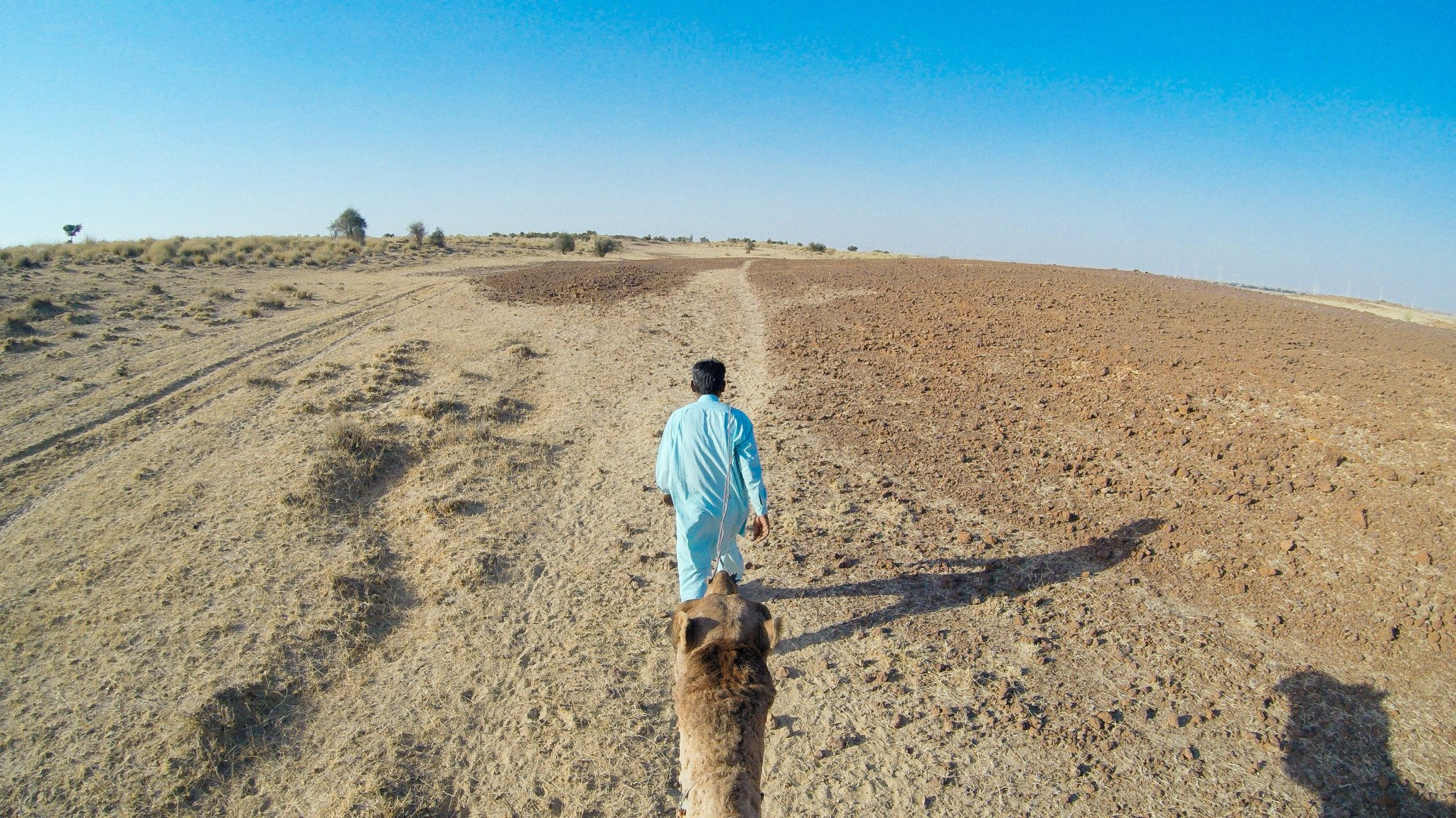 Camel safari in the Thar Desert | Rajasthan Itinerary | India