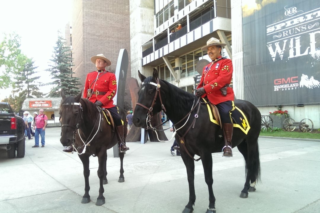 Experience the Calgary Stampede | Summer Activities Calgary | Alberta, Canada