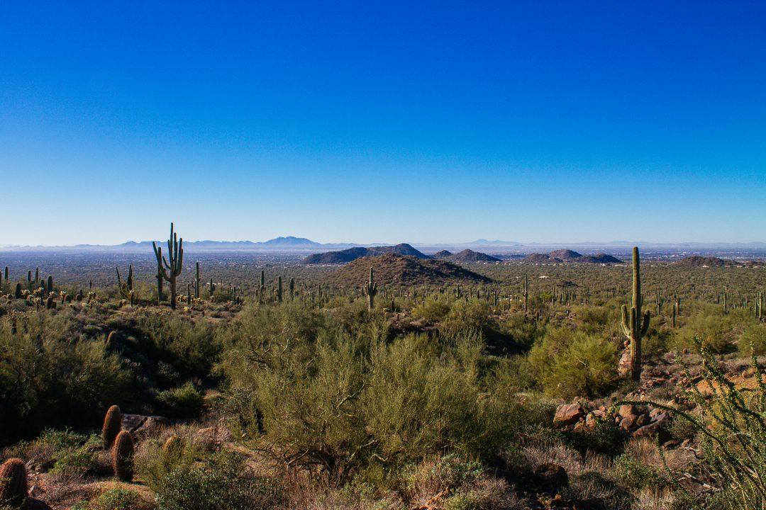 How far is Mesa to Phoenix