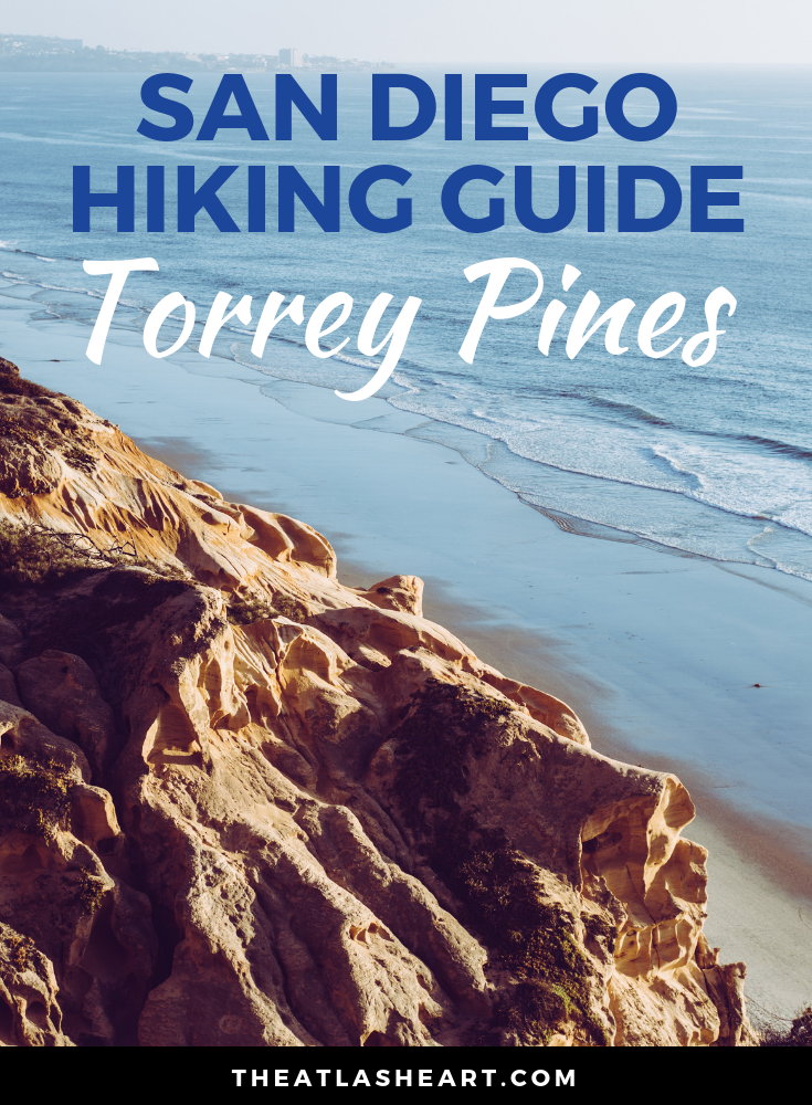 San Diego Hiking Guide | Torrey Pines Hike