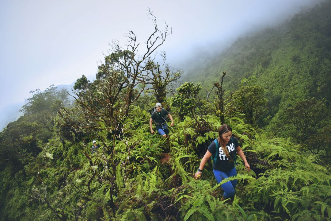 Ka'au crater hike - best hikes on Oahu