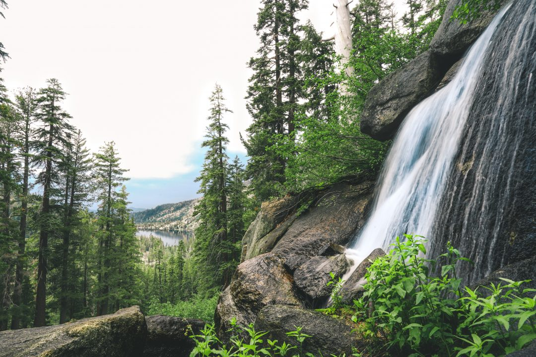 Things to do in Lake Tahoe in summer - hike the PCT Trail
