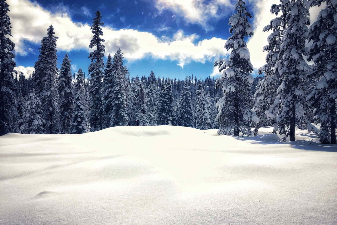 Lake Tahoe elevation is high enough for plenty of snow for SnowFest